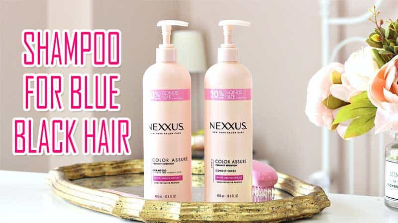 5 Best Shampoo For Blue Black Hair You'll Be Wanting