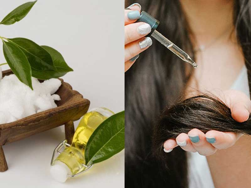 How Does Camphor For Hair Growth Work? Truth Revealed